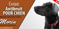 Nouveau Casque Antibruit pour chien chez Morin